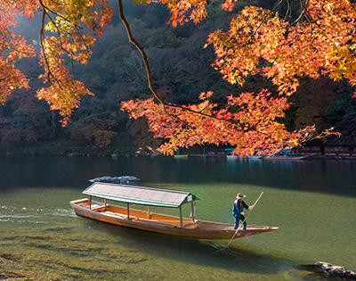 The Fall Colours of Japan - Gallery Image