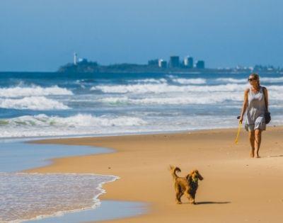 Sand Dunes Resort - Gallery Image