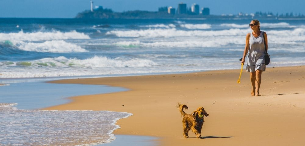 Sand Dunes Resort Image 4