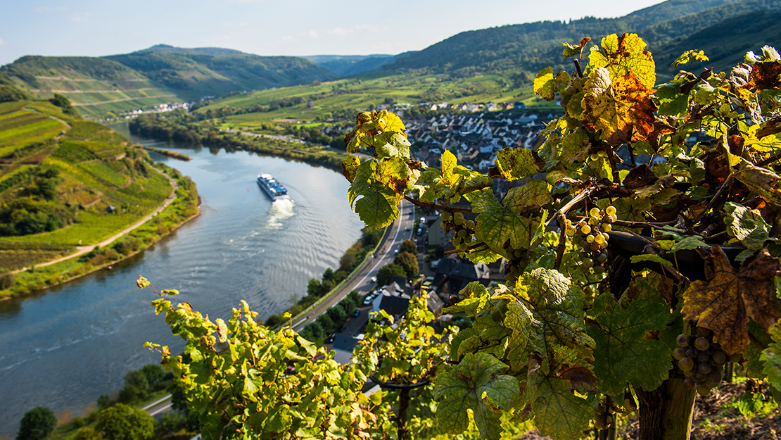 Moselle River Guide - Hero Image