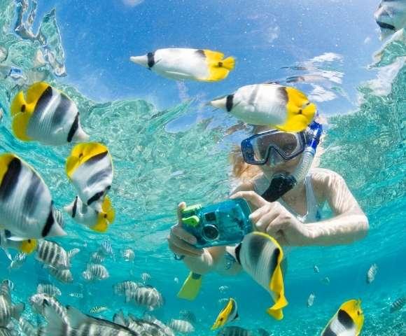 Pullman Cairns International Image 4