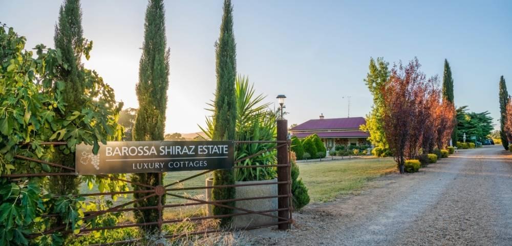 Barossa Shiraz Estate Image 1
