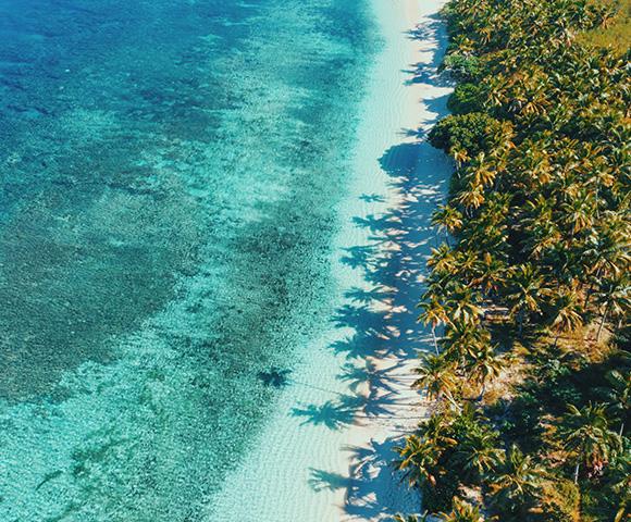 Fiji - Gallery Image