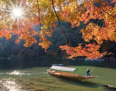Autumn Colours of Japan - Gallery Image