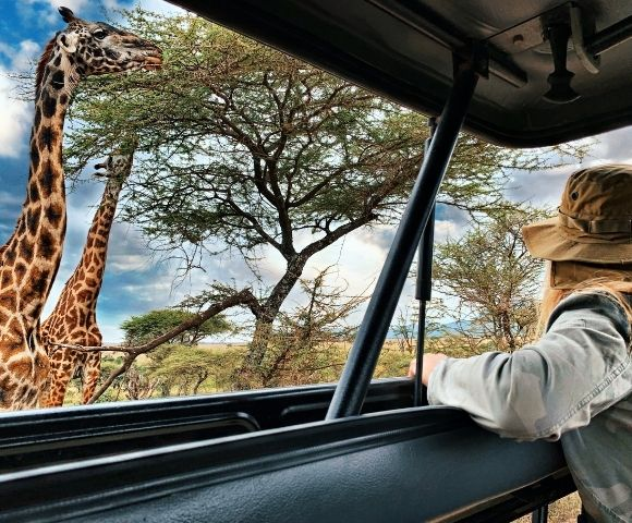 African Safari & Grand Voyage to Venice in 2022 Image 1