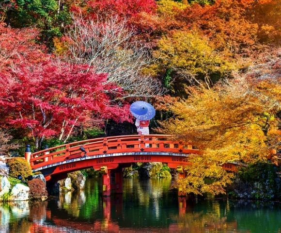 Luxury Japan – Autumn Colours Image 2