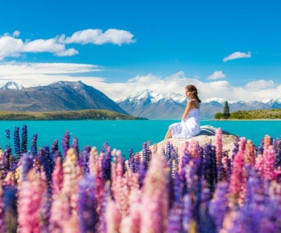 Spirit of Christmas in New Zealand Main Image