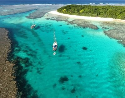 Exotic Pacific Discovery - Gallery Image