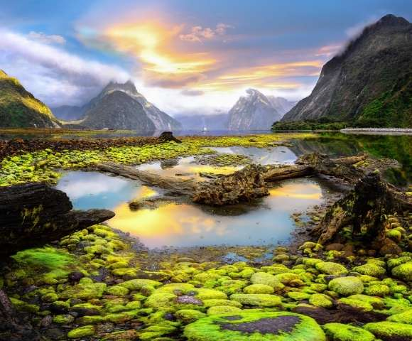 Picturesque New Zealand Main Image