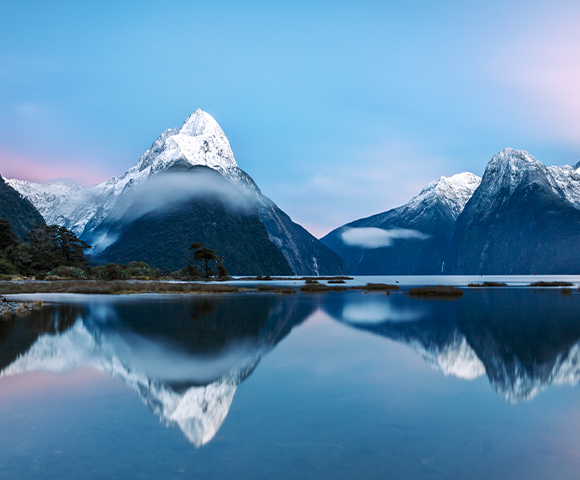 Scenic New Zealand Discovery Image 1