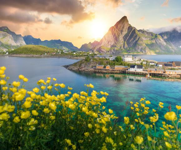 Norwegian Fjords & the Midnight Sun Image 3