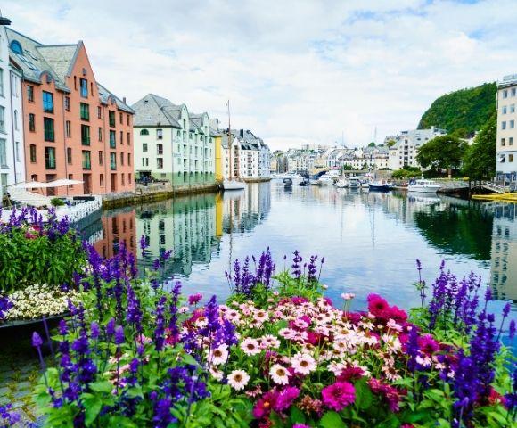 Arctic Circle & the Summer Solstice Main Image